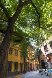 galeri_stockholm131