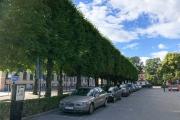 galeri_stockholm70